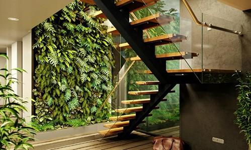 Vườn trong nhà thường rất khó chăm sóc và các cây dễ chết. Ảnh: Inhabitat.