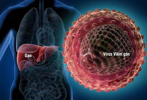 GGT cảnh báo nhiều bệnh về gan