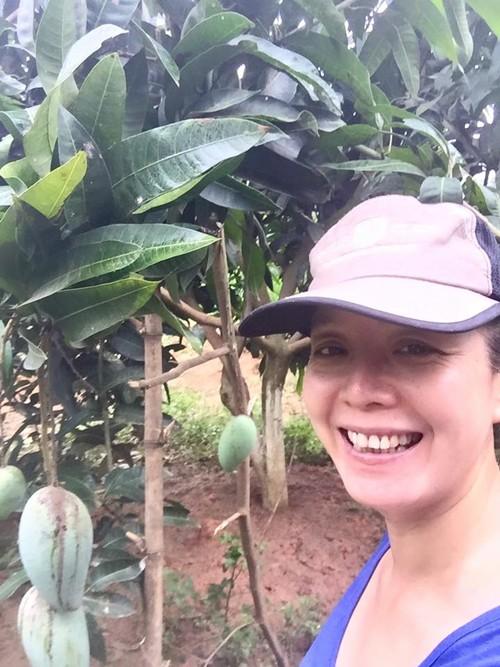 Những lúc về Hà Nội, chị gửi gắm vườn cây cho người hàng xóm trông coi và phụ giúp tưới nước.