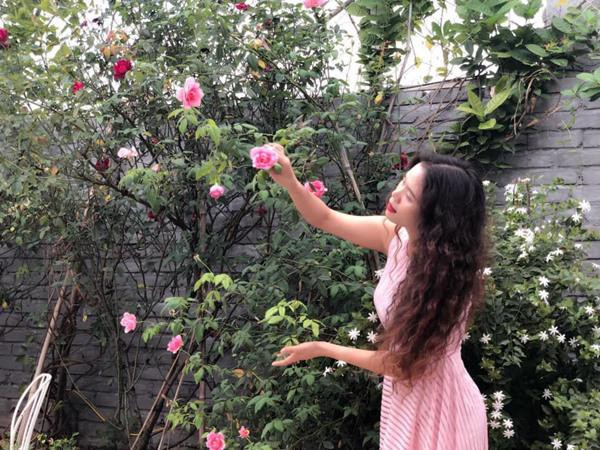 Sân thượng hoa hồng luôn khoe sắc rực rỡ của chị Diệu Thúy ( Hà Nội) chắc chắn sẽ khiến bất kỳ ai có dịp ghé thăm đều không muốn ra về.