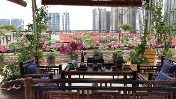 Còn gì tuyệt vời hơn khi vừa nhâm lý tách trà nóng vừa ngắm nhìn vẻ đẹp của một góc nhỏ Hà Nội từ trên cao.