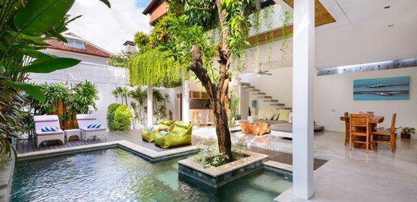 Ngôi nhà phong cách rừng nhiệt đới nhìn đâu cũng thấy cây xanh - Ảnh 2.