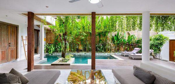 Ngôi nhà phong cách rừng nhiệt đới nhìn đâu cũng thấy cây xanh - Ảnh 3.