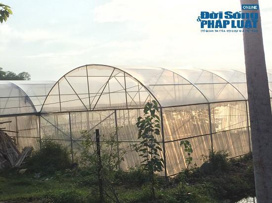 Giá đất xung quanh trang trại 300 tỷ của sư thầy Thích Thanh Toàn đắt thế nào? - Ảnh 3.