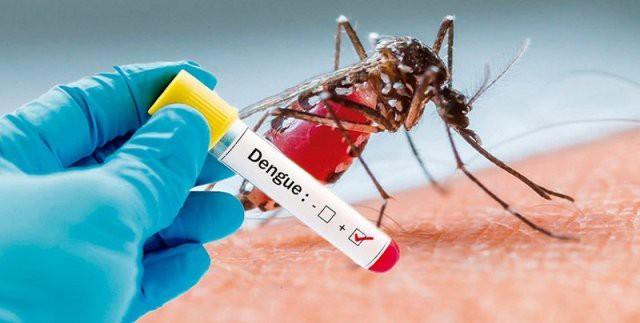 Bộ Y tế cập nhật kiến thức mới điều trị bệnh sốt xuất huyết, giảm tỷ lệ tử vong - Ảnh 2.