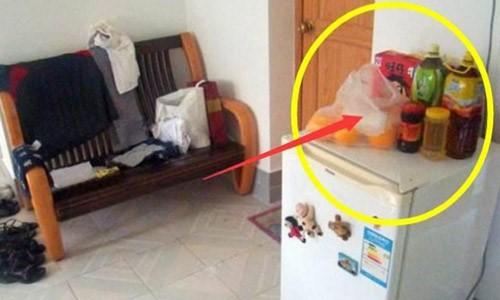 Những thói quen tai hại nhiều người vẫn hay làm khiến tủ lạnh nhanh chóng trở thành đống sắt vụn - Ảnh 6.