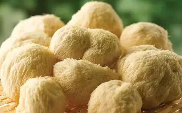 5 loại nấm tốt nhất cho sức khỏe ngừa chất gây ung thư loại 1, giúp trẻ thông minh hơn  - Ảnh 3.