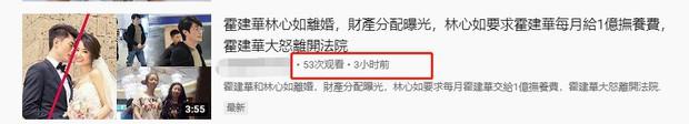 Rộ tin Lâm Tâm Như ly hôn, giành được quyền nuôi con, hàng tháng đòi Hoắc Kiến Hoa phải chu cấp 70 tỷ - Ảnh 2.