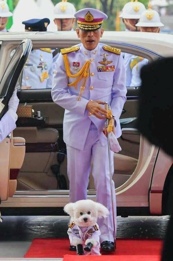 Quốc vương Thái Lan phế truất Hoàng quý phi: 4 vợ và chuyện chú chó được yêu chiều đặc biệt - Ảnh 5.