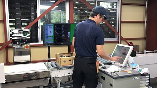 Cách nhà vườn Nhật sản xuất nho xa xỉ - Ảnh 2.