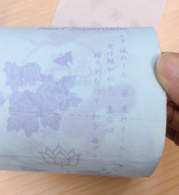 Ở Việt Nam thì bình thường nhưng giấy vệ sinh tại nước ngoài lại muôn hình vạn trạng thu hút khách hàng, có loại lên tới 34 tỷ đồng/cuộn - Ảnh 8.