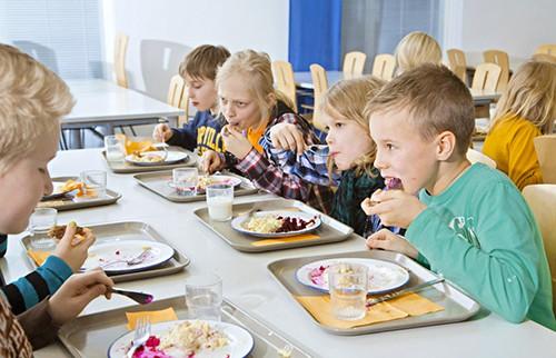 Bữa ăn học đường miễn phí ở một số quốc gia  - Ảnh 1.