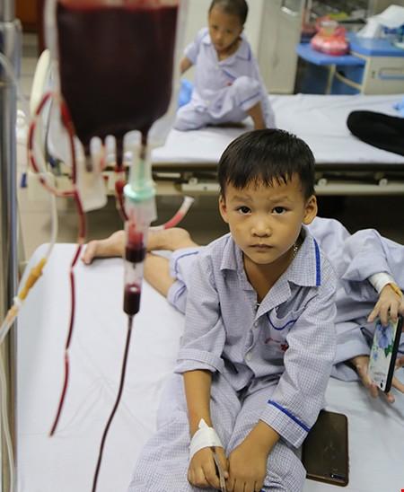 Rớt nước mắt câu nói của cậu bé sống nhờ máu người lạ khi mẹ hỏi: Muốn có em trai hay gái? - Ảnh 1.