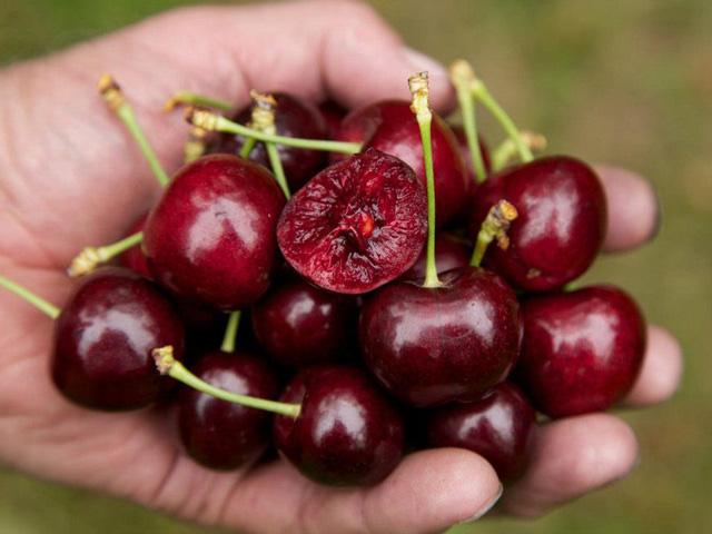 """Chỉ cần ăn 5 loại thực phẩm này đều đặn mỗi sáng, ung thư ruột kết nguy hiểm cũng """"lánh xa"""" bạn - Ảnh 3."""