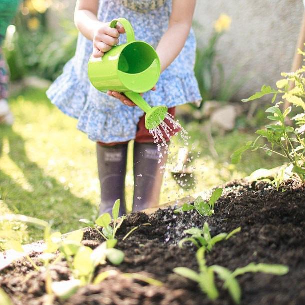 Người đàn ông tự trồng rau quả sạch trên khu vườn rộng 225m² của gia đình ở ngoại ô - Ảnh 17.