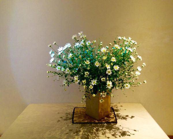 Cho 1 thìa muối vào bình hoa cúc họa mi, chơi cả tuần không thối, không hỏng, đẹp mê li - Ảnh 4.