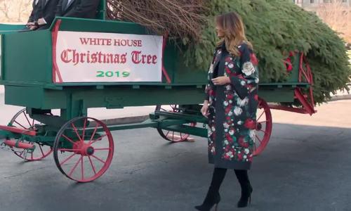 Melania đón cây thông Giáng sinh khổng lồ đến Nhà Trắng  - Ảnh 1.