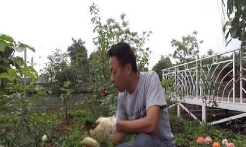 Việt Hoàn từng thất vọng vì vợ không biết nội trợ  - Ảnh 3.
