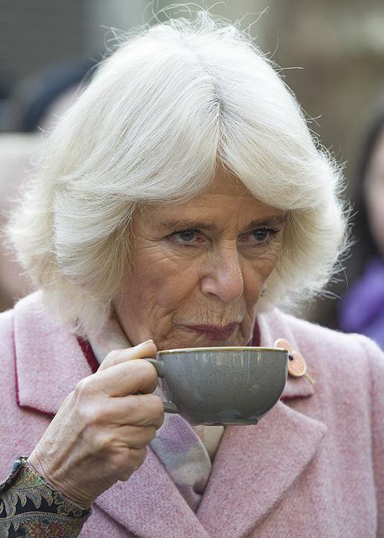 Bà Camilla hủy dự sự kiện chung với vợ chồng Meghan - Ảnh 1.