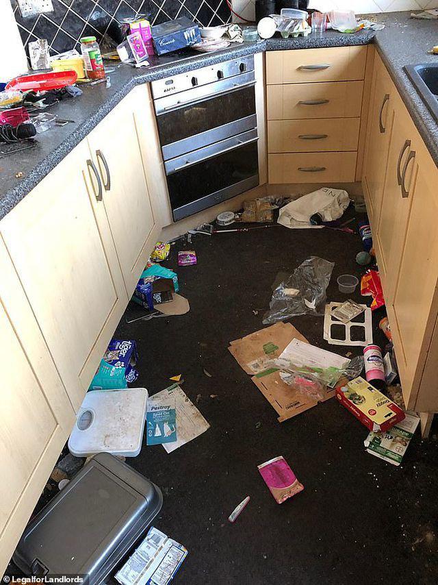 Cơn ác mộng của chủ trọ với căn nhà đầy rác thải và người thuê trọ trốn nợ - Ảnh 3.