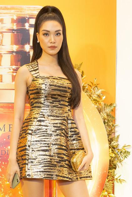 Hoa hậu Thùy Dung thấy buồn khi định cư ở Mỹ - Ảnh 1.