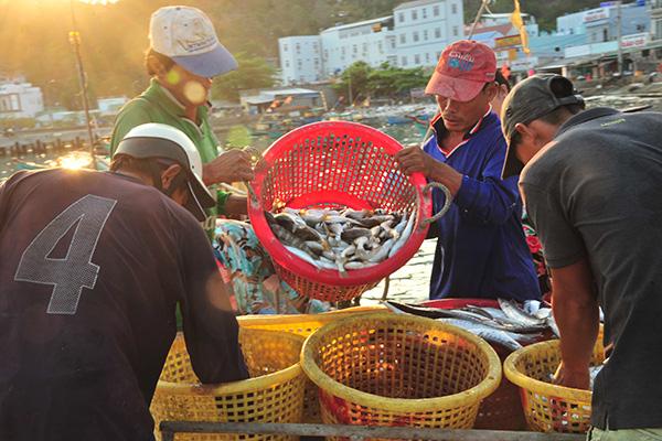 """Chợ hải sản """"không mặc cả"""" trên đảo Nam Du - Ảnh 5."""