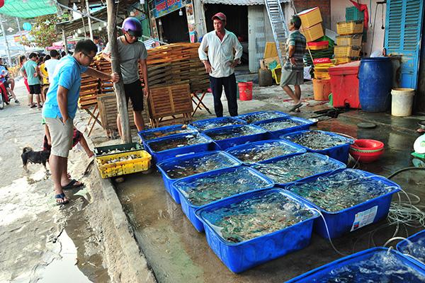 """Chợ hải sản """"không mặc cả"""" trên đảo Nam Du - Ảnh 2."""