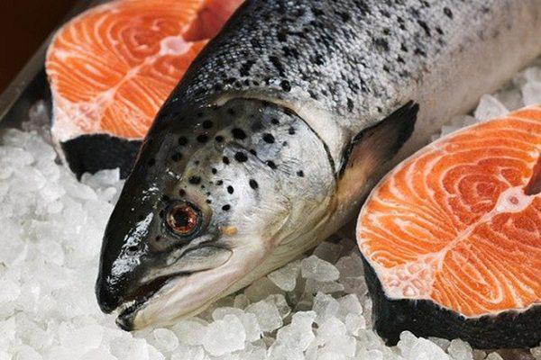 Lợi ích của ăn cá và hải sản không như chúng ta nghĩ, nó là hoa hồng có gai - Ảnh 2.