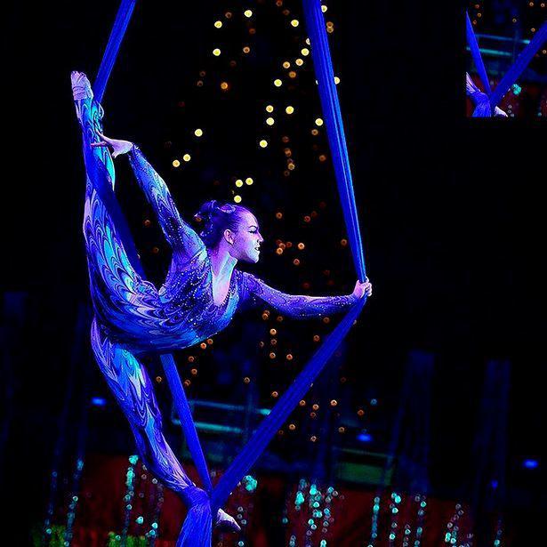Nữ nghệ sĩ xiếc rơi từ độ cao 6m, khán giả nhí kinh hoàng - Ảnh 2.