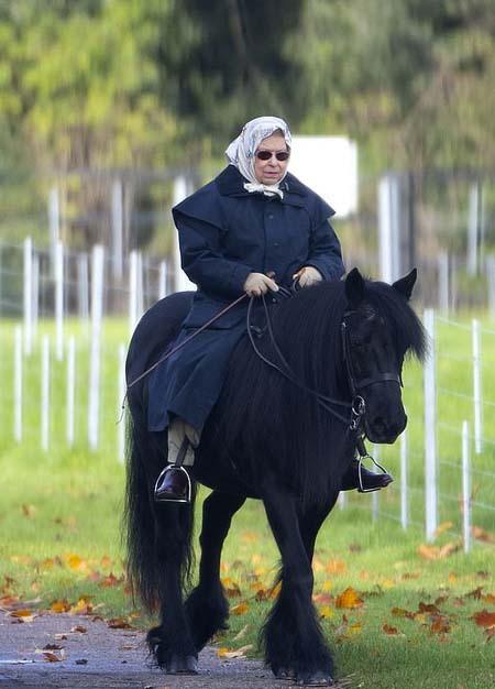 Công chúa Charlotte mê ngựa giống Nữ hoàng Anh - Ảnh 2.