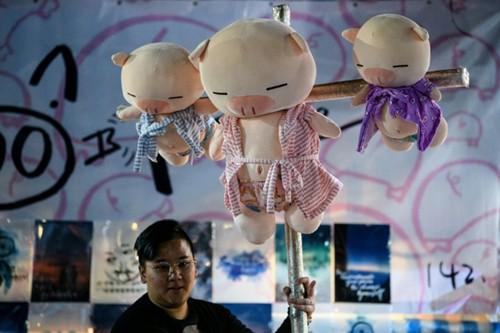 Thú bông hình con lợn bày bán ở Hong Kong trước Tết nguyên đán.