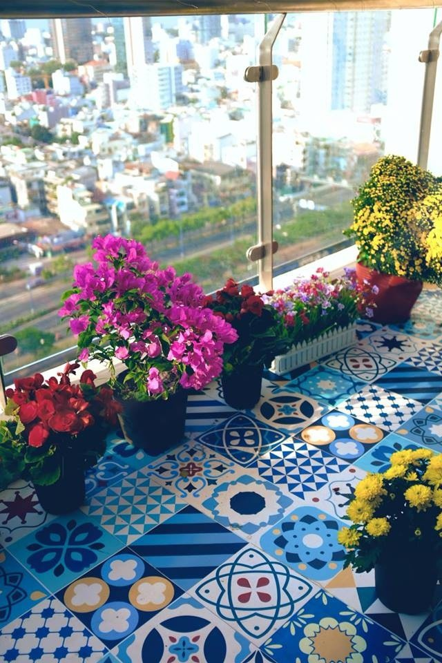 Những chậu hoa nở bung khoe sắc khiến khắp nơi đều bừng sáng.