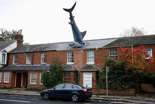 """16, Mô hình cá mập dài tới 7,6m """"đâm đầu"""" xuống mái nhà ở Oxford, Anh."""