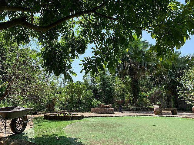 Khu vườn rộng, thoáng mát và nhiều cây xanh.