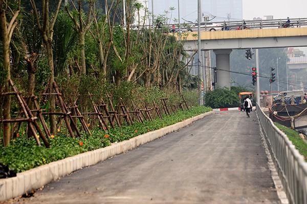 Tuyến đường cũng được trồng mới một hàng cây lấy bóng mát.