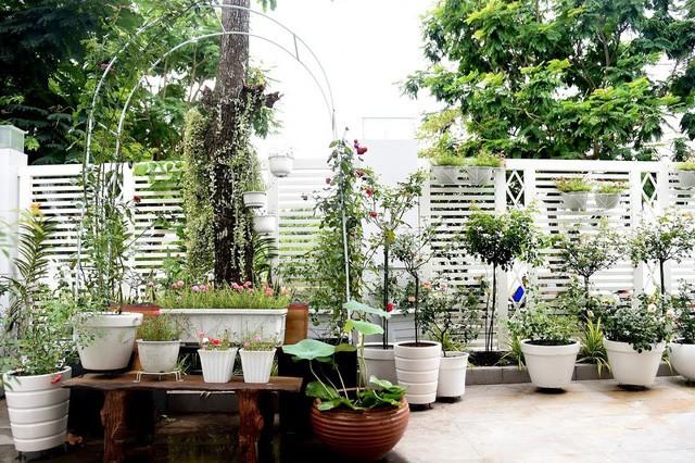 Không gian sống tràn ngập cây xanh và hoa cỏ khiến nhiều người xuýt xoa của gia đình Quyền Linh