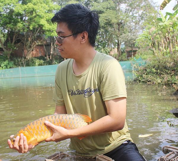 Cá huyết long - giống cá quý hiếm luôn thu hút sự quan tâm của giới chơi cá cảnh được nuôi tại trang trại ở xã Sông Trầu (huyện Trảng Bom).