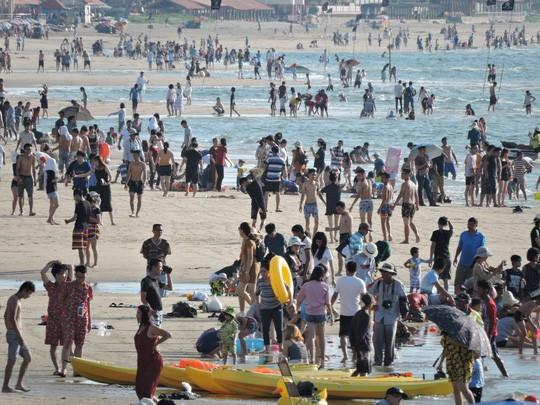 Nhiều du khách chỉ vừa xuống tắm được ít phút đã vội lên bờ ngay khi bị sứa tấn công