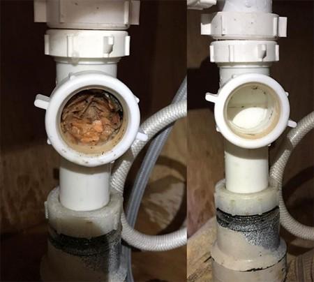 Thức ăn có thể tắc cứng ở các đoạn ống nối, bạn cần tháo ra để làm sạch, khi các biện pháp khác không hiệu quả.