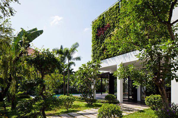 Ngôi nhà nổi bật như viên ngọc xanh giữa lòng phố thị.