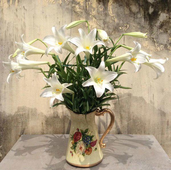 Có rất nhiều cách để giữ hoa tươi lâu, như cho thêm thuốc hay bỏ đồng xu vào bình.