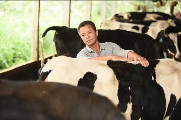 Người nông dân được trang bị kỹ năng chăn nuôi và kiểm soát rủi ro liên quan đến sức khỏe đàn bò