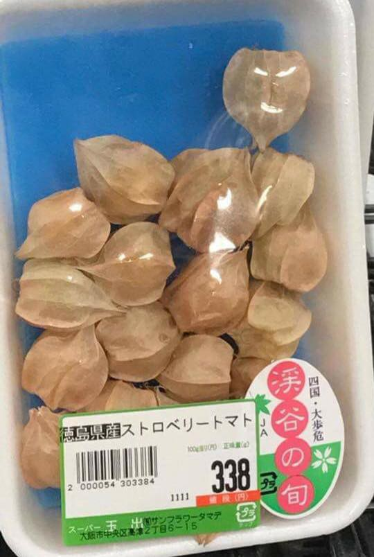 Tại Nhật Bản, quả tầm bóp được đóng khay bán trong các siêu thị, cửa hàng với 338 yên Nhật, tương đương khoảng 70.000 một lạng.