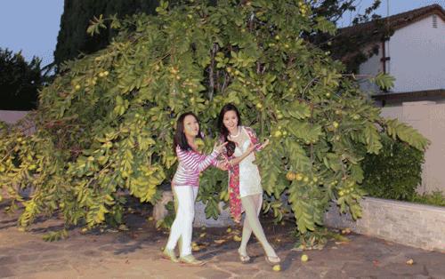 Mảnh vườn của bà 'Sáu bảnh' còn hấp dẫn bởi những thức quả quê hương được trồng ngay trên đất Mỹ.