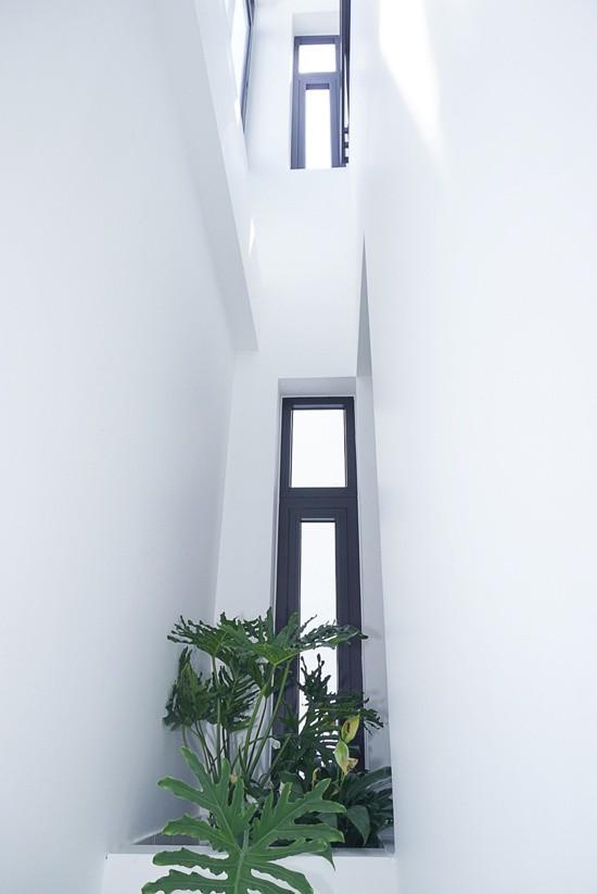 Cuối cùng, tận dụng khoảng hở vốn là sân sau của căn nhà cấp 4 liền kề, kiến trúc sư trổ những khung cửa lấy sáng dài. Đồng thời khu vực này cũng chừa ra một khoảng không gian hẹp để làm giếng trời thông suốt 4 tầng nhà.