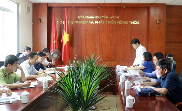 Đoàn kiểm tra của Tổng cục Thủy sản làm việc với tỉnh Lào Cai về tình hình buôn lậu tôm hùm đỏ. Ảnh: Báo Lào Cai.