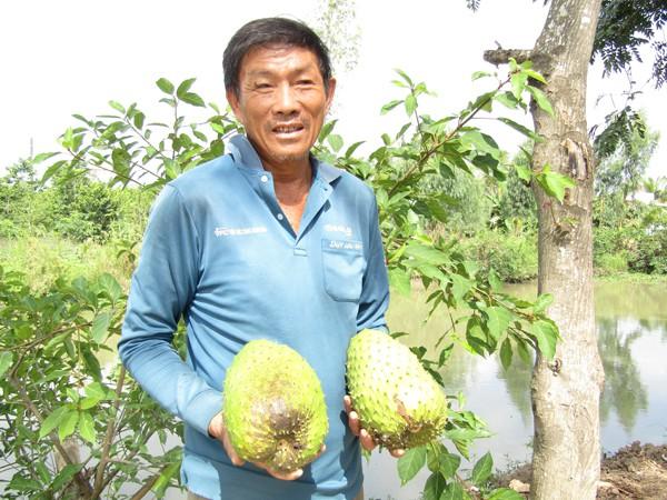 Ông Nguyễn Hoài Hận giới thiệu những trái mãng cầu xiêm to bự trong vườn nhà.