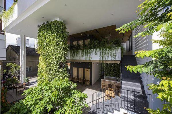 Các loại cây dây leo trồng ở tầng trên trải xuống giống như vườn treo Balylon thời cổ đại.