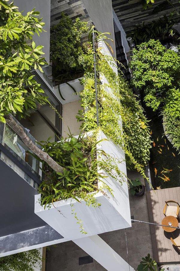Cây trồng bố trí hợp lý và khéo léo, hệ thống bơm nước giấu bên dưới tường cung cấp đủ nước cho cây phát triển.