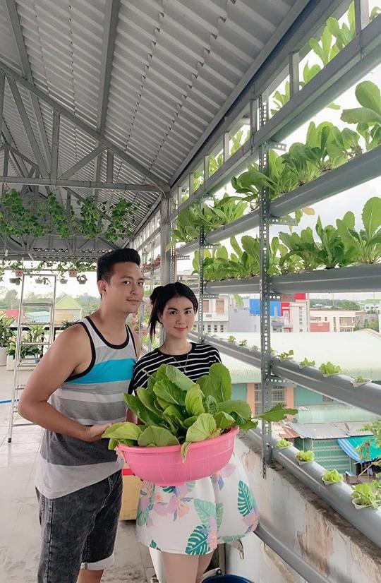 Vườn rau thủy canh trên sân thượng của vợ chồng Kha Ly - Thanh Duy